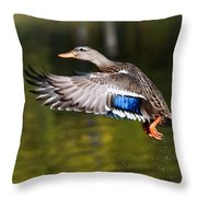 Take-off - Santa Cruz, California Throw Pillow