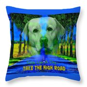 Take The High Road Throw Pillow by Kathy Tarochione
