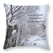 Take Time To Ponder  Throw Pillow