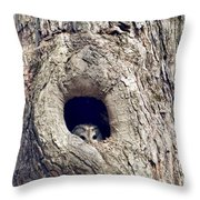 Taking A Peek Throw Pillow