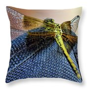Taking A Pit Stop Throw Pillow