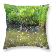Taking A Stroll With Mom Troughs Floral Reflections Throw Pillow