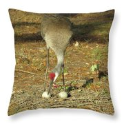Taking Care Of Her Eggs  Throw Pillow