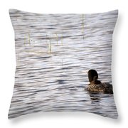 Taking Chick For Ride Throw Pillow