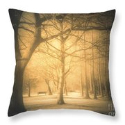 Taking Cover Throw Pillow