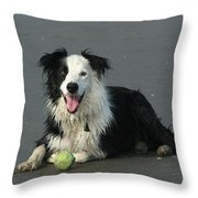 Taking Five Throw Pillow