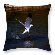 Taking Flight Throw Pillow by Amanda Struz