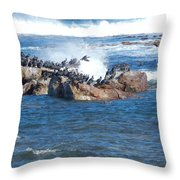 taking flight Capetown Throw Pillow