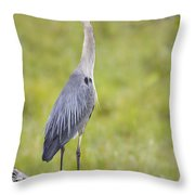 Taking In The Scenery Throw Pillow