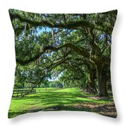 Tale Of The Oaks Throw Pillow