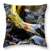 Tale Of The Wild Koi Throw Pillow