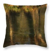Tales From The Riverbank   V Throw Pillow