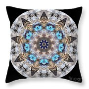 Talisman 2413 Throw Pillow