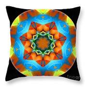 Talisman 3594 Throw Pillow