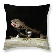 Talking Lizard Throw Pillow