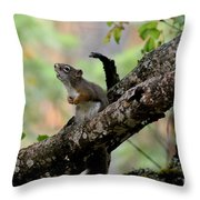 Talking Squirrel Throw Pillow