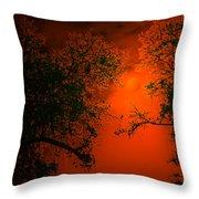 Talking Trees Of Night Throw Pillow