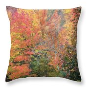 Tall And Wide Throw Pillow