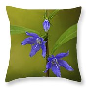 Tall Bellflower Throw Pillow