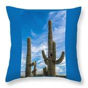 Tall Cacti Throw Pillow