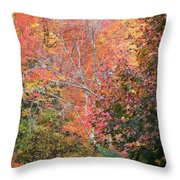 Tall Colors Throw Pillow