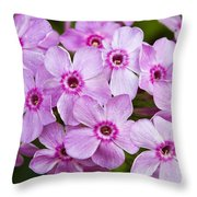Tall Garden Phlox Throw Pillow