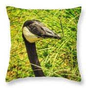 Tall Grasses Throw Pillow
