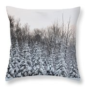 Tall 'n Small Throw Pillow