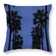 Tall Palm Trees In A Row Throw Pillow