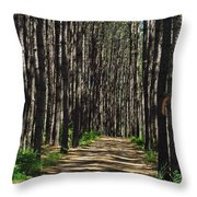Tall Pine Lined Path Throw Pillow