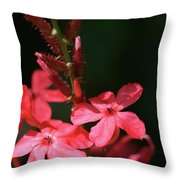 Tall Red Star Throw Pillow