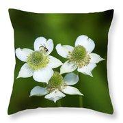 Tall Thimbleweed Dsmf0228 Throw Pillow