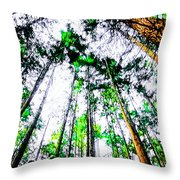 Tall Trees To The Sky Throw Pillow