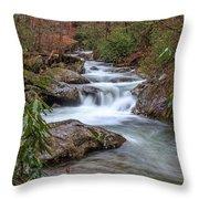 Tallulah River Throw Pillow