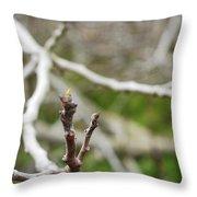 Talon Branch Throw Pillow