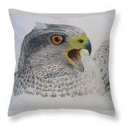 Talon Throw Pillow