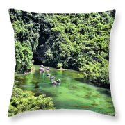 Tam Coc Boats On Ngo Dong River  Throw Pillow