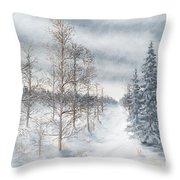 Tamarack Swamp In Winter 2  Throw Pillow