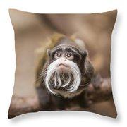 Tamarin Monkey 1 Throw Pillow