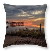 Tampa  Throw Pillow