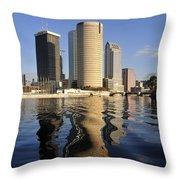 Tampa Florida 2010 Throw Pillow