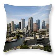 Tampa Florida Landscape Throw Pillow