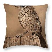 Tanager Finch Throw Pillow