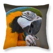 Tanganyika 0090 Throw Pillow