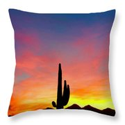 Tangible Journey Throw Pillow
