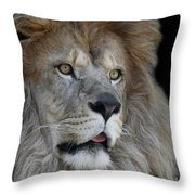 Tango #2 V2 Throw Pillow