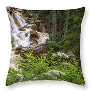 Tanner Flat Falls Throw Pillow