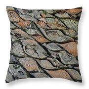 Tanzania Tree - Kenya Throw Pillow