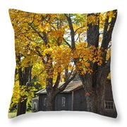 Tar Paper Shack Throw Pillow