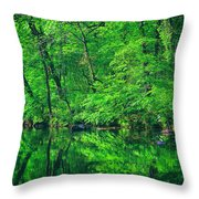 Tar River Reflection Throw Pillow